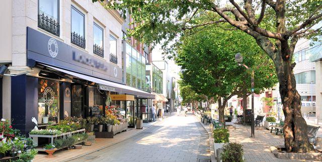 自然派ランチやペットOKなお店が人気。自由が丘のおすすめカフェ7選
