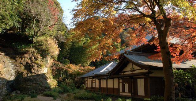 Kamakura Trip Guide!